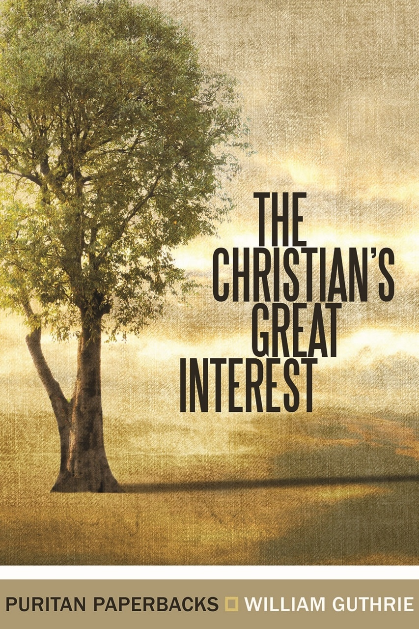 cover image for The Christian's Great Interest