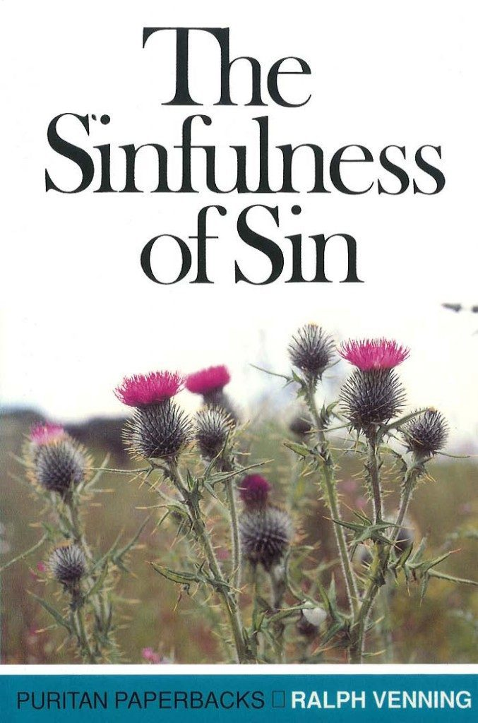 cover for the sinfulness of sin
