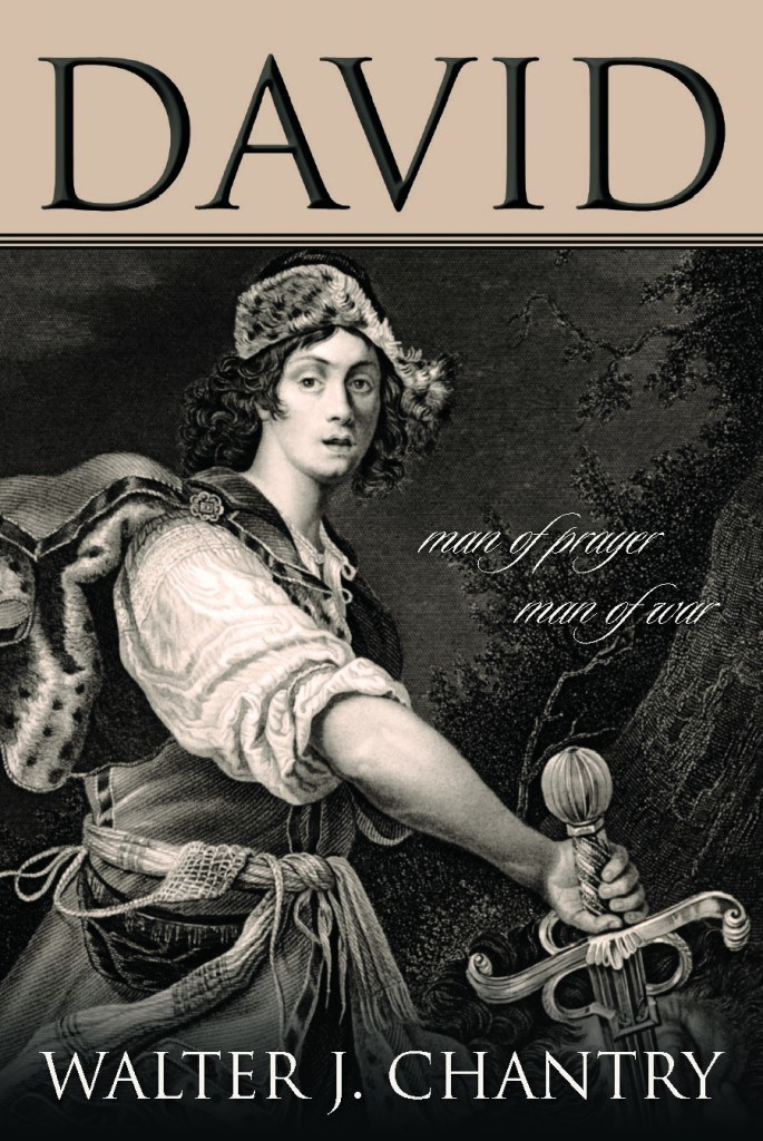 Book Cover For 'David'