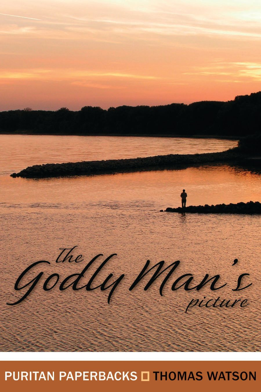 cover image for The Godly Man's Picture