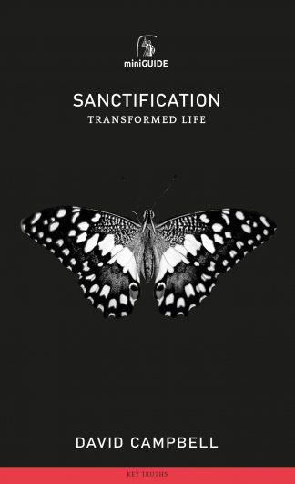 image of 'sanctification' mini guide