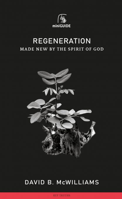 image of 'Regeneration' the mini-guide