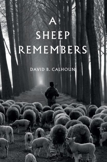 image of the book a sheep remembers