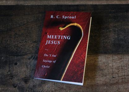 image of the book 'Meeting Jesus'